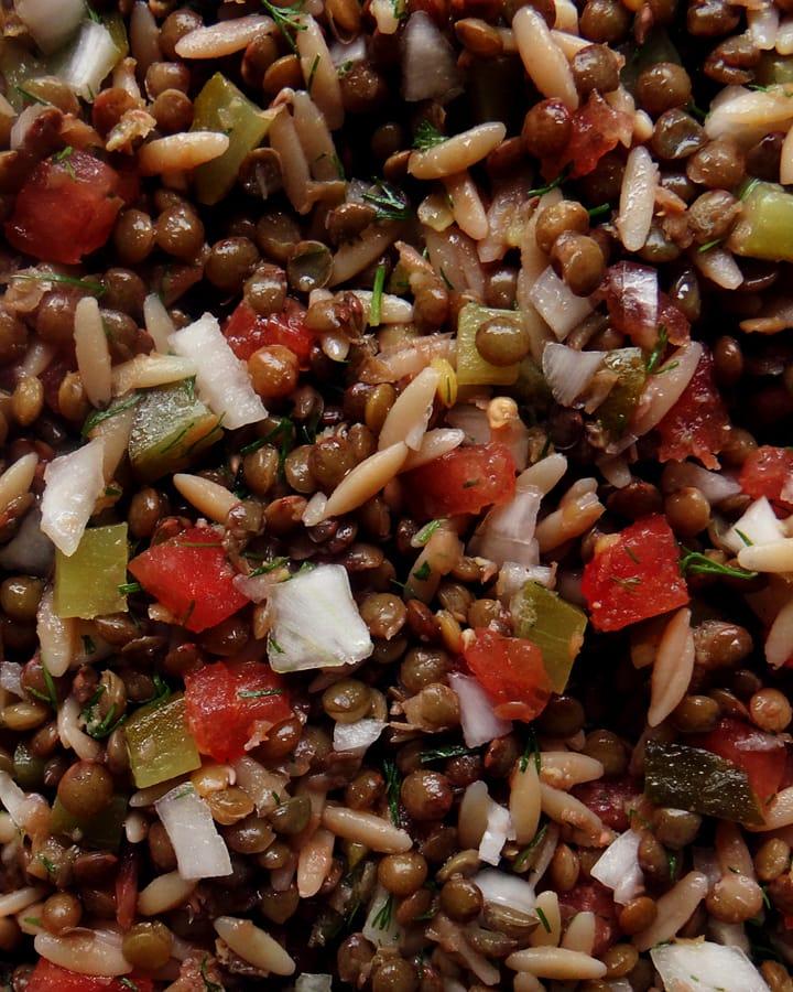 salade de lentilles vertes oignons tomates
