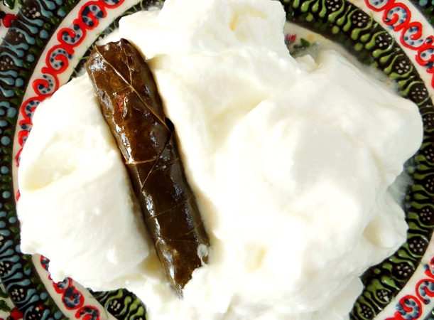 feuille de vigne et yaourt